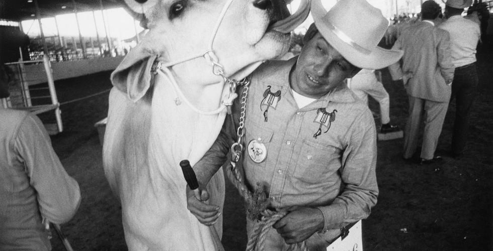 Garry Winogrand, Texas State Fair, Dallas, Texas, 1964