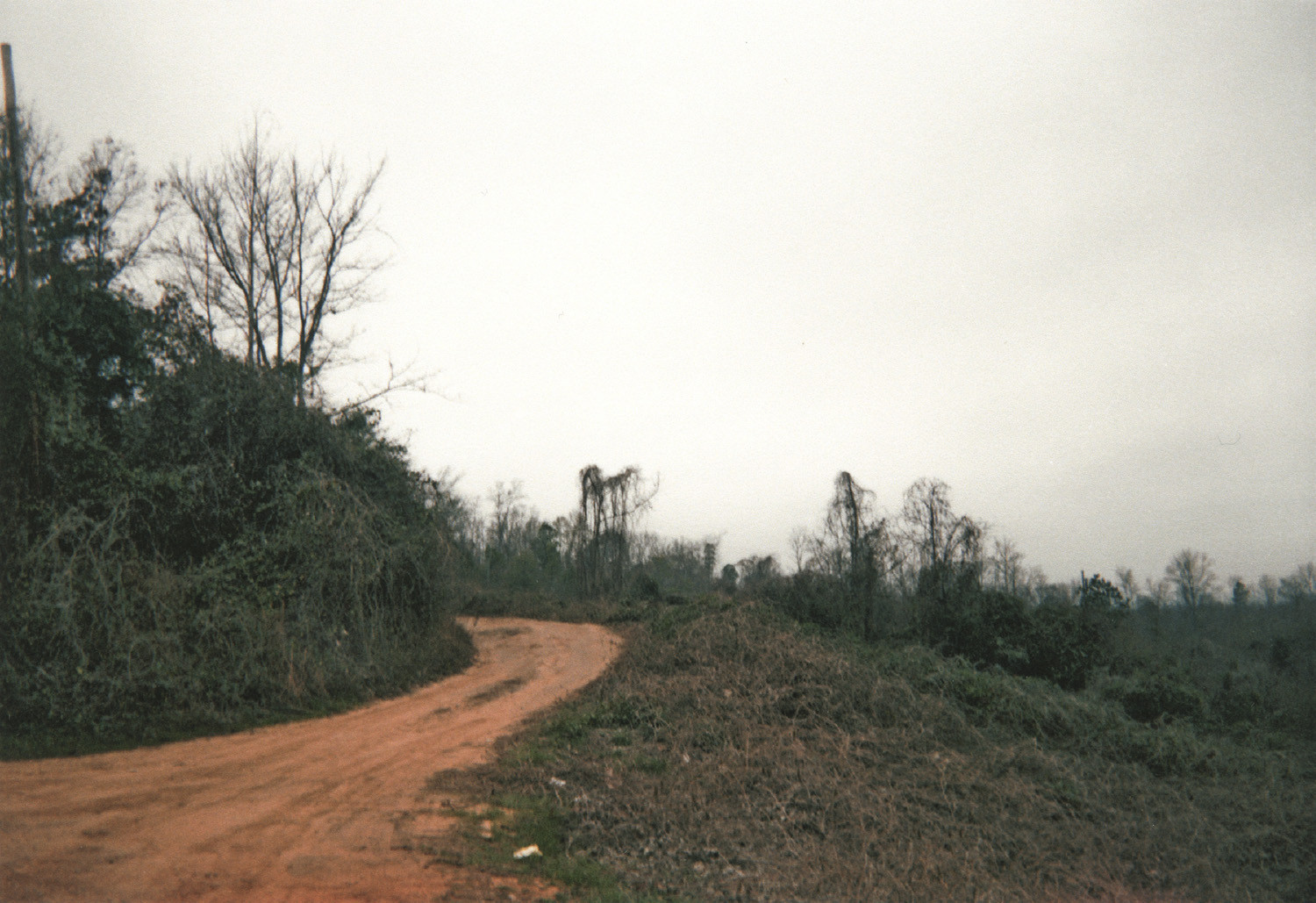William Christenberry, Winding Road and Kudzu, Tuscaloosa County, Alabama, 2000