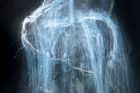teamLab, Universe of Water Particles, 2013