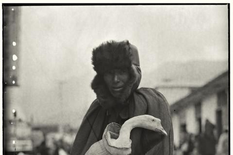 Adou, Man Clutching Goose, 2006