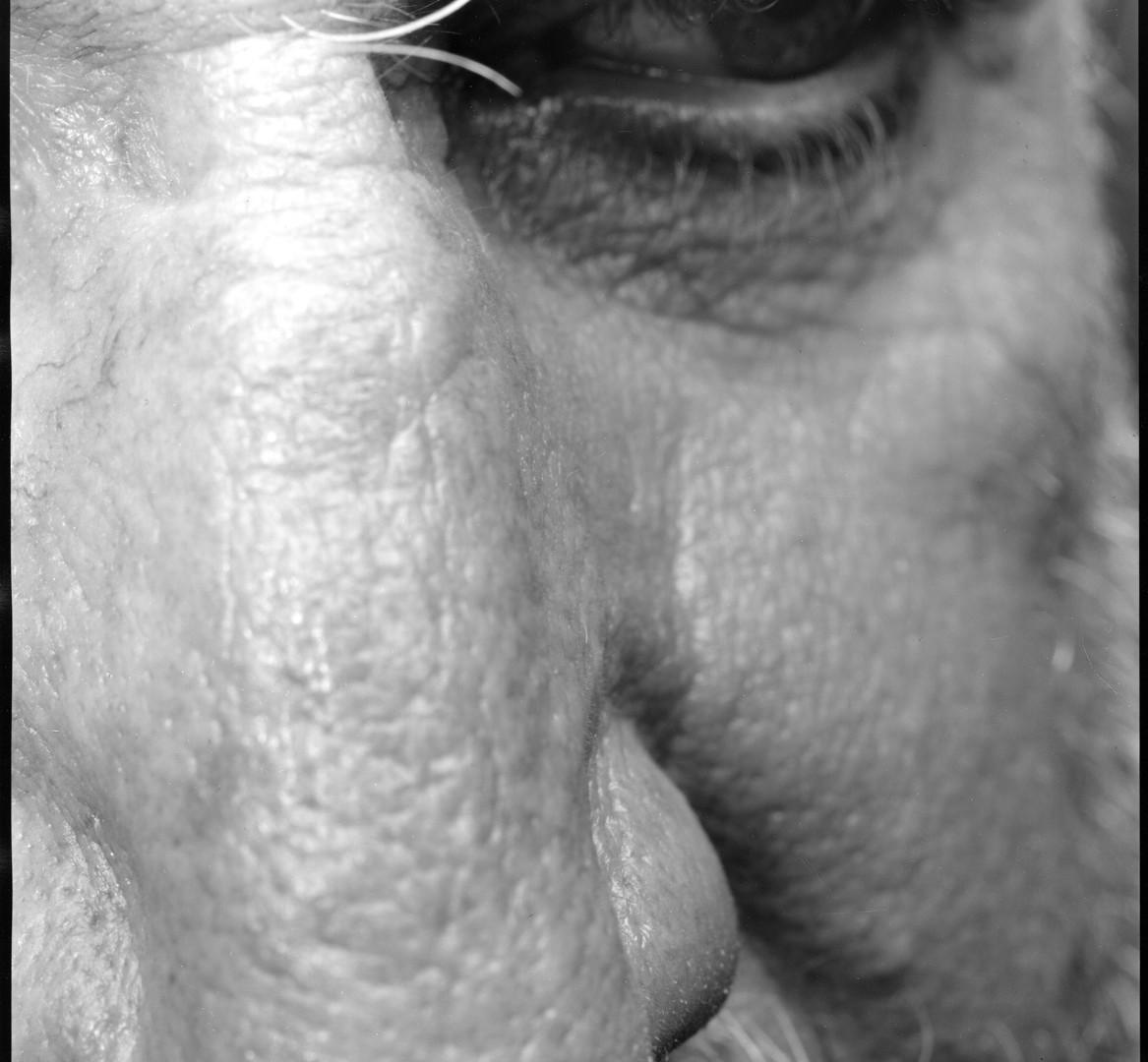 Nicholas Nixon, Self (22), Brookline, 2009