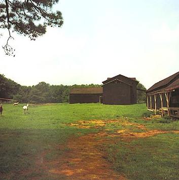 William Christenberry, Horses and Black Building, Newbern, Alabama, 1978