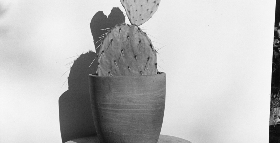 Henry Wessel, Valentine's Day, 1976