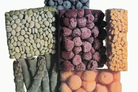 Irving Penn, Frozen Foods, New York, 1977