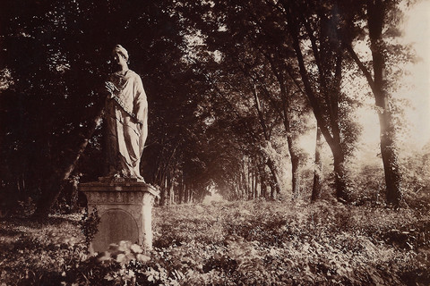 Eugène Atget, Parc de Sceaux, 1925