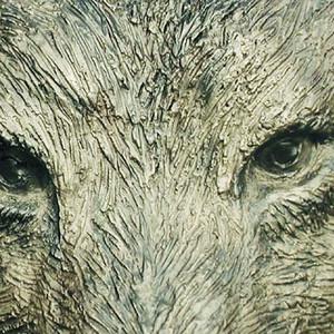 Kiki Smith, Bronze Wolf, 2000
