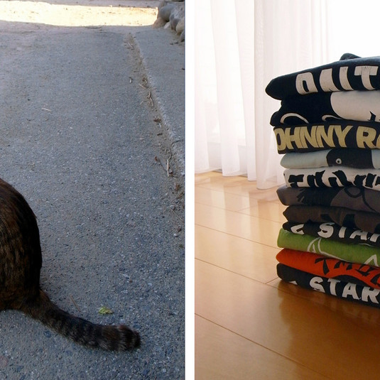 Yoshitomo Nara, Fukushima cat / stacked T-shirts, 2011