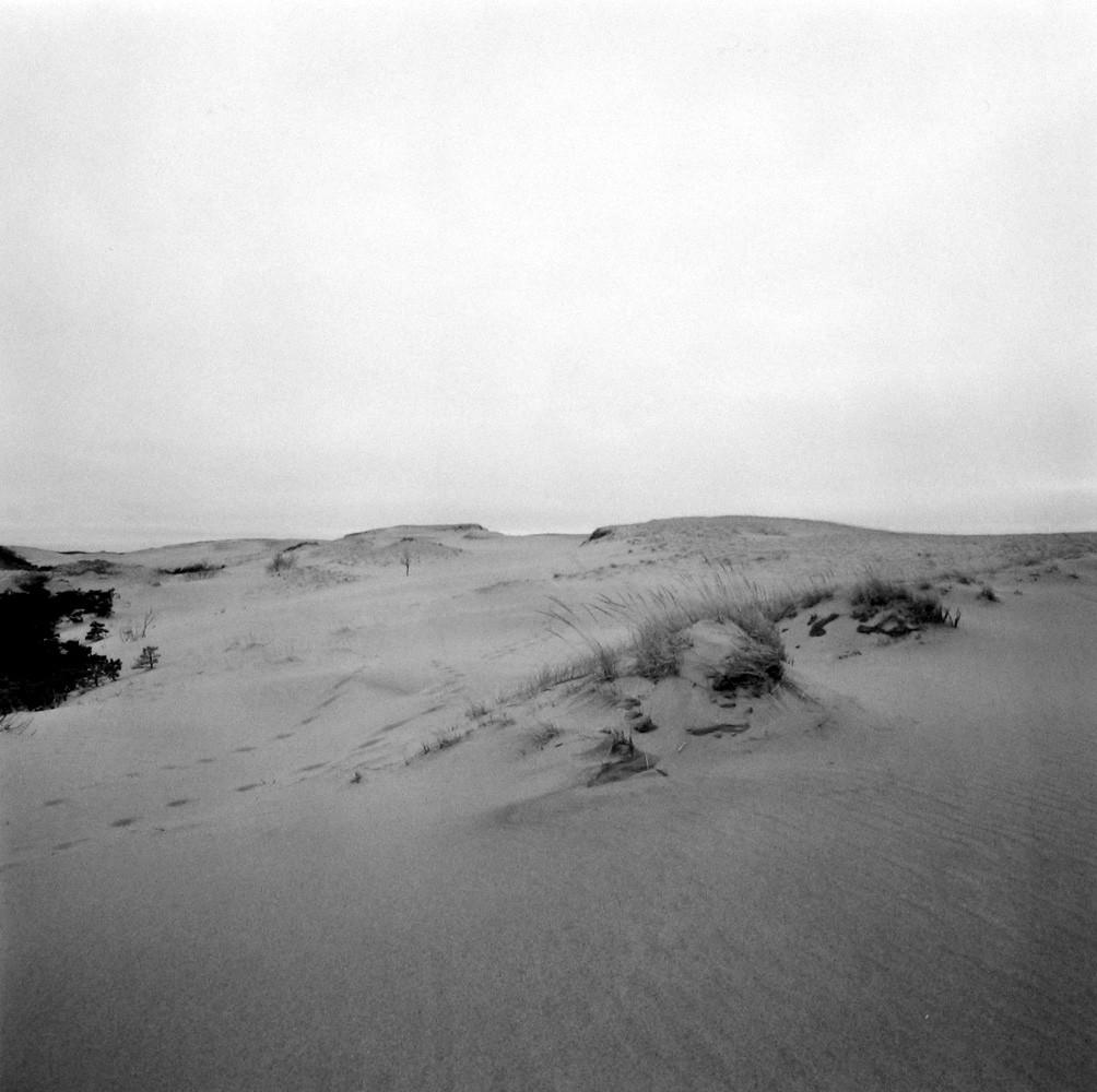 Harry Callahan, Cape Cod, 1972