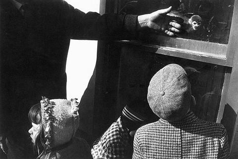 Garry Winogrand, New York City, 1964