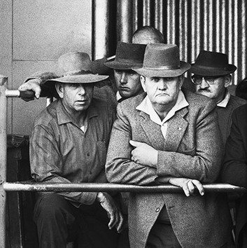 David Goldblatt, Farmers at a cattle auction. Vryburg, Cape Province (North-West Province). , 1965