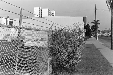 Lee Friedlander, San Diego (Car, Fence and Bush), California, 1970