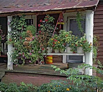 William Christenberry, House with Flowers, near Morgan Springs, Alabama, 1984