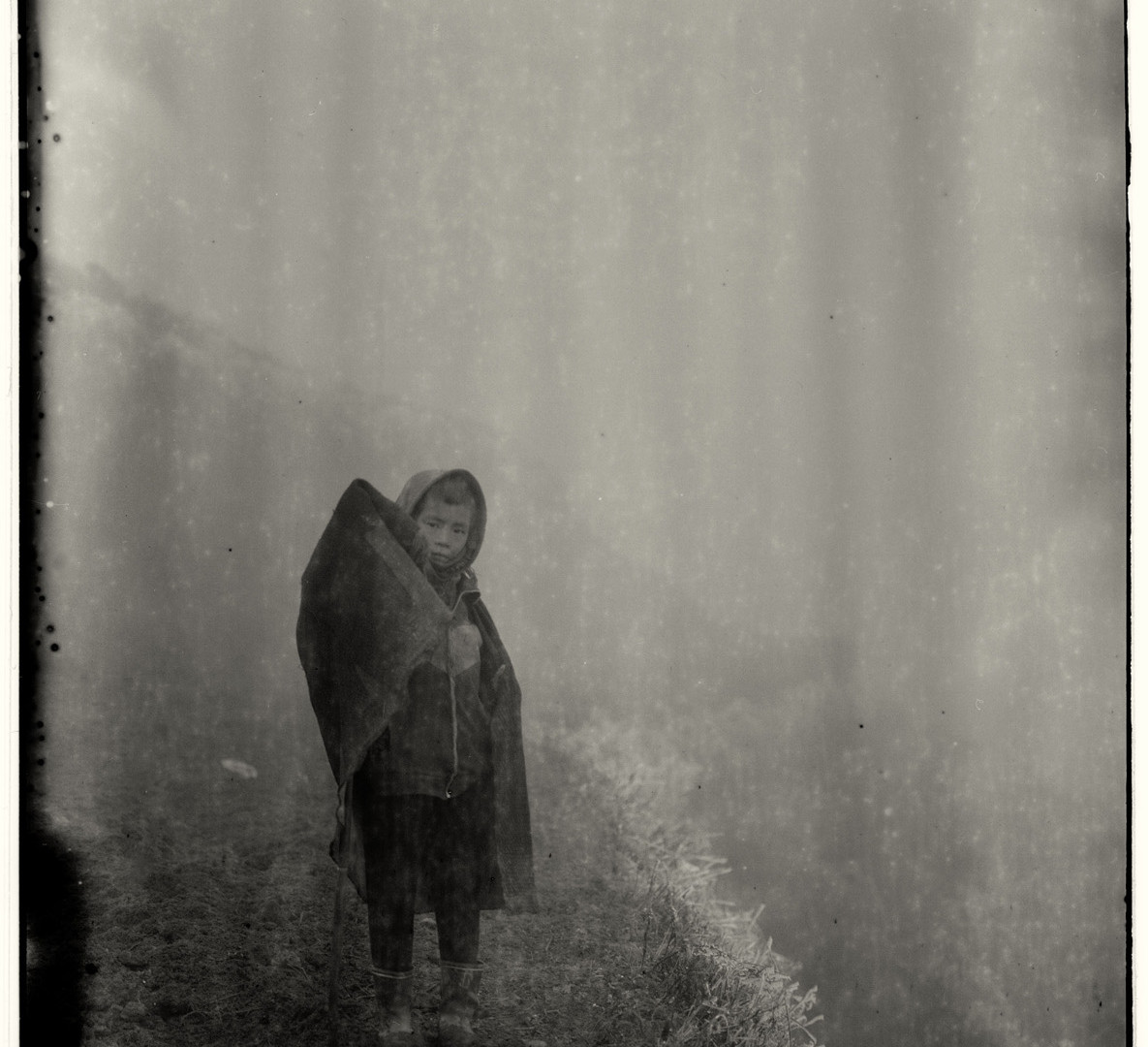 Adou, Fog, Child, Frost, 2006