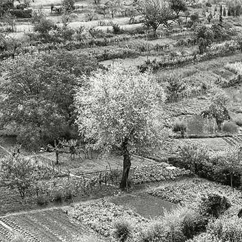 Emmet Gowin, Siena, Italy, 1975