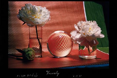 Duane Michals, Vasarely, 6/17/07