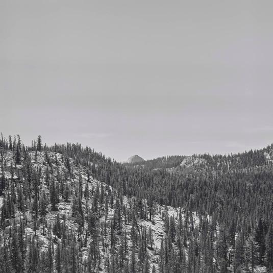 Richard Learoyd, Yosemite II, 2018