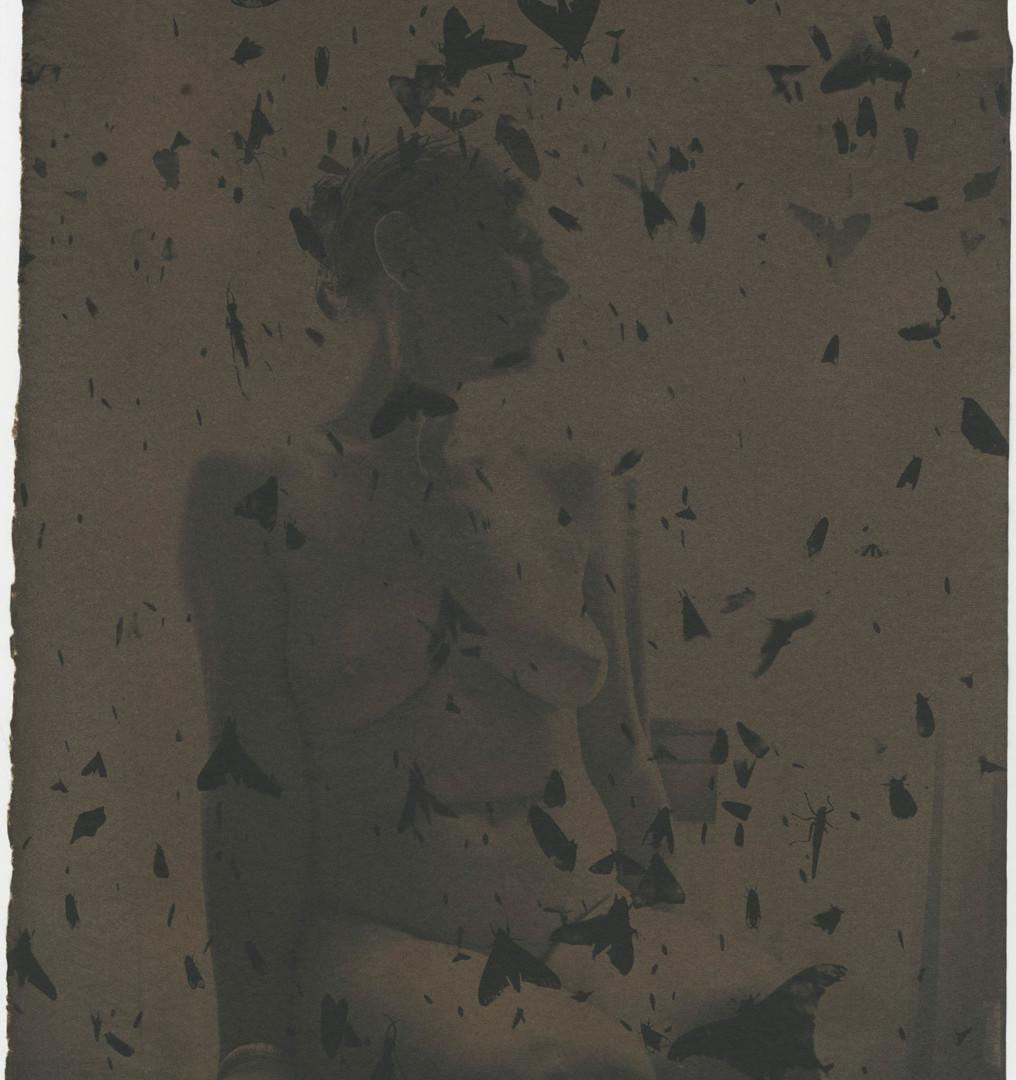 Emmet Gowin, Edith in Panama, Dark, 2005