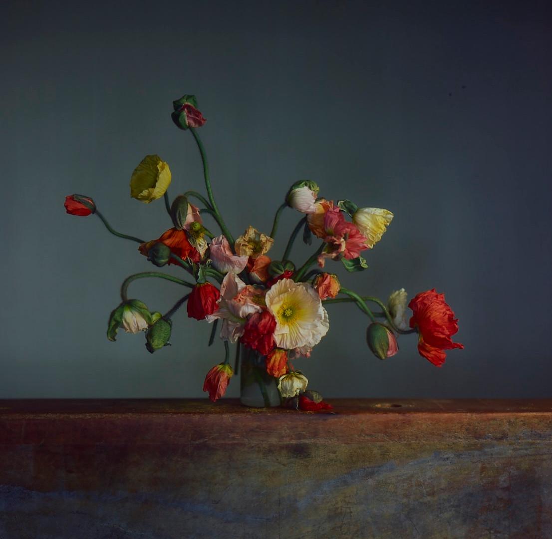 Richard Learoyd, Flowers, Day 2, 2019