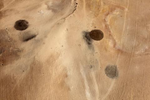 Fazal Sheikh, Desert Bloom 4, 2011