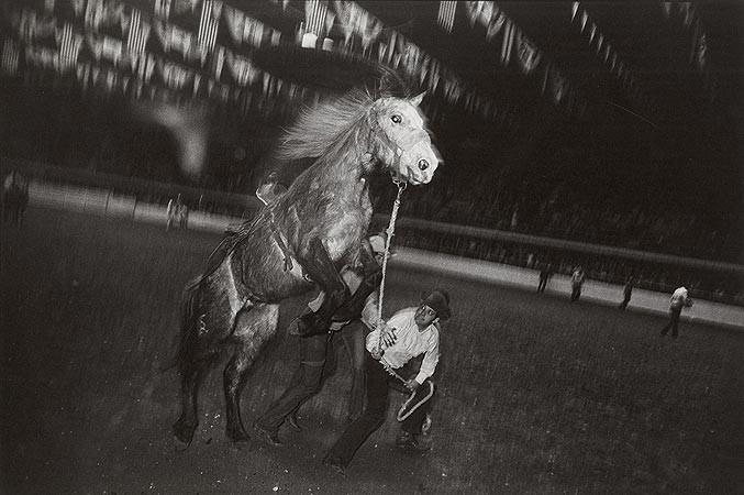 Garry Winogrand, Fort Worth, Texas, 1974