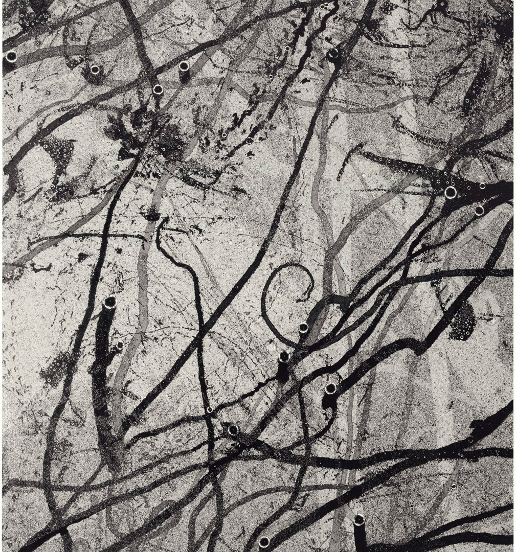 Emmet Gowin, Insect movement on a mist covered surface, French Guiana, 2011