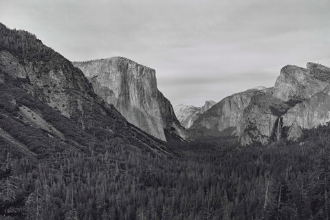 Richard Learoyd, Yosemite IV (BGV), 2018