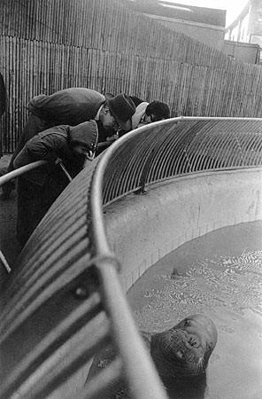 Garry Winogrand, New York City, 1963