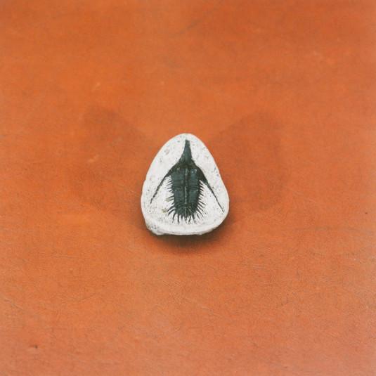 Yto Barrada, Untitled (Berringer's Lying Stones), 2014/2015
