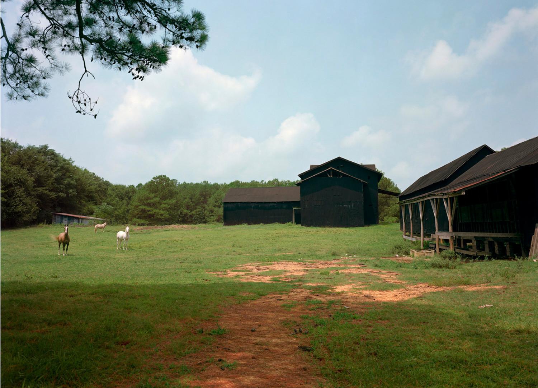William Christenberry, Horse and Black Buildings, Newbern, Alabama, 1978 (print made 2013)
