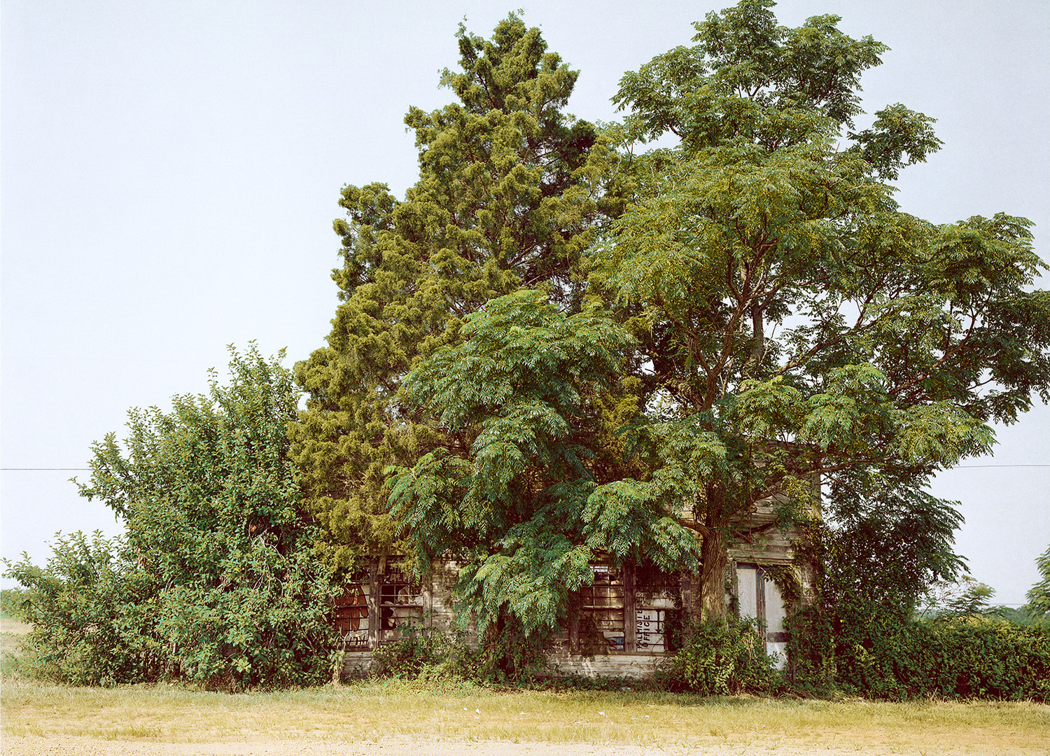 William Christenberry, Palmist Building (Summer), Havana Junction, Alabama, 1980
