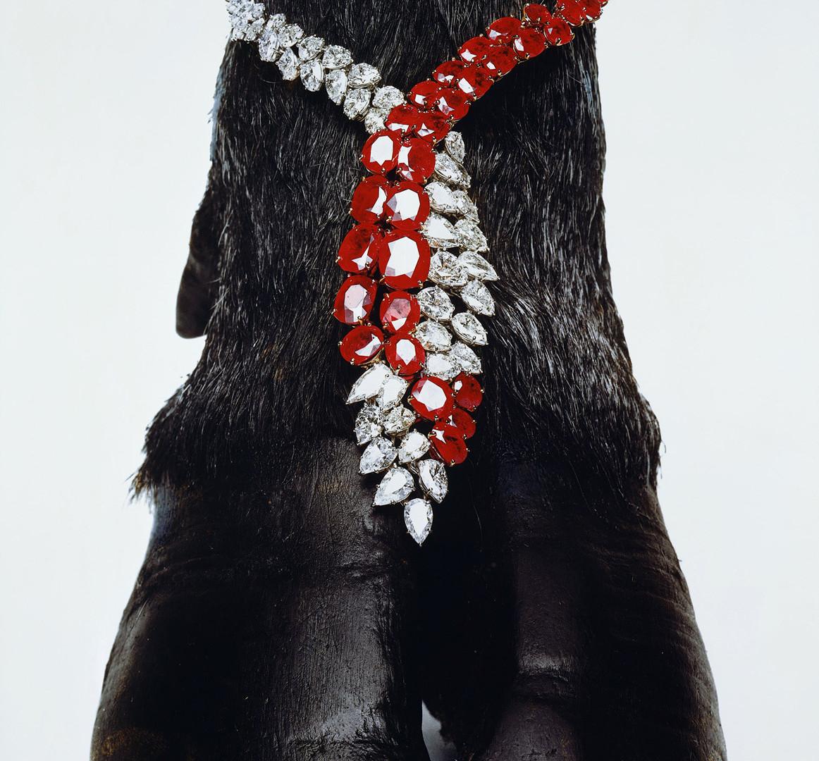 Hiro, Harry Winston Necklace, New York, 1963