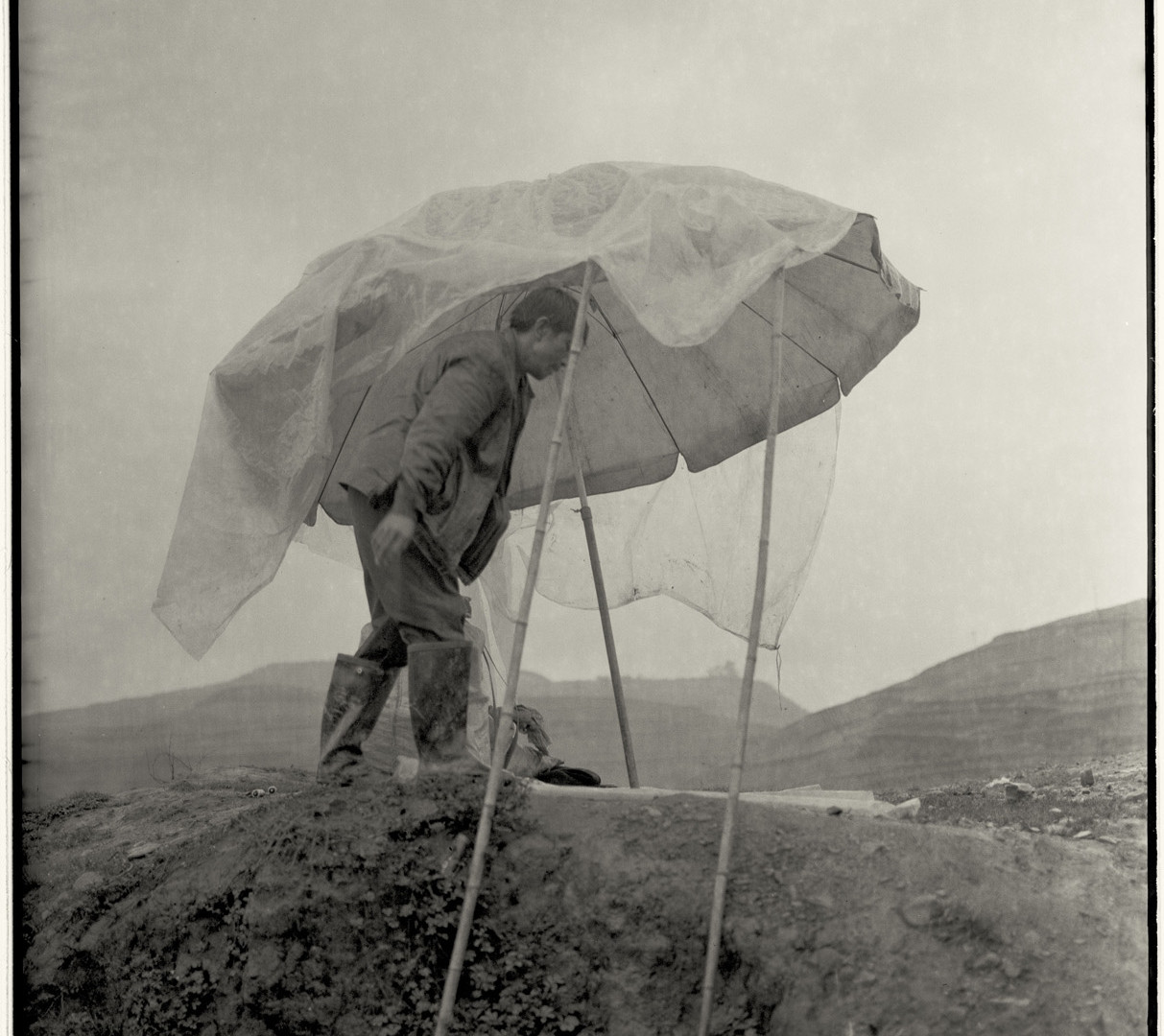 Adou, Umbrella and Man, 2006