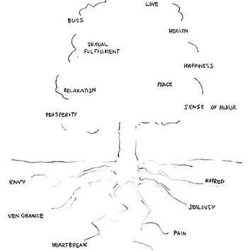 David Byrne, Hidden Roots, 2002