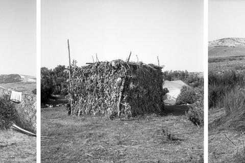 Yto Barrada, Cabane de Lauriers (Oleander Summer Shed), Sidi Mghait, Fig. 1, 2009