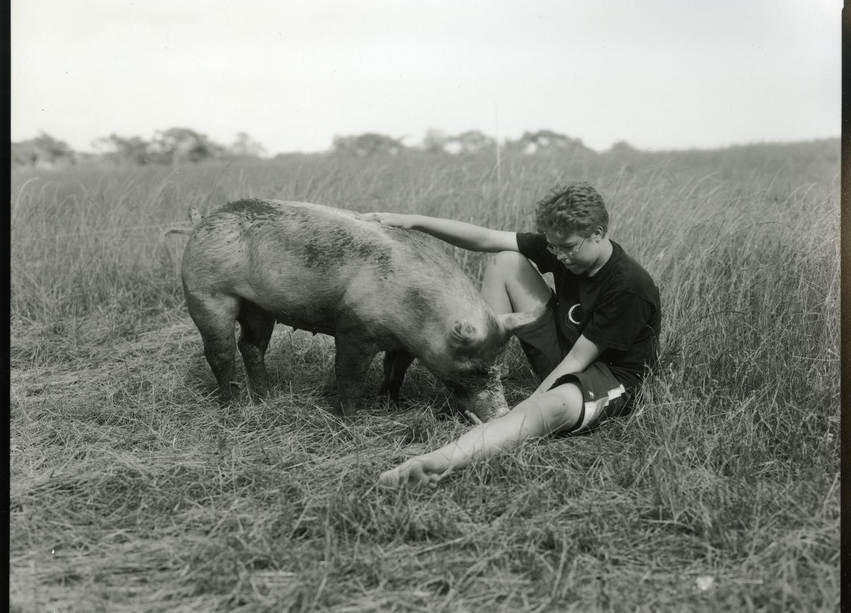Judith Joy Ross, Steven with pig, 2010