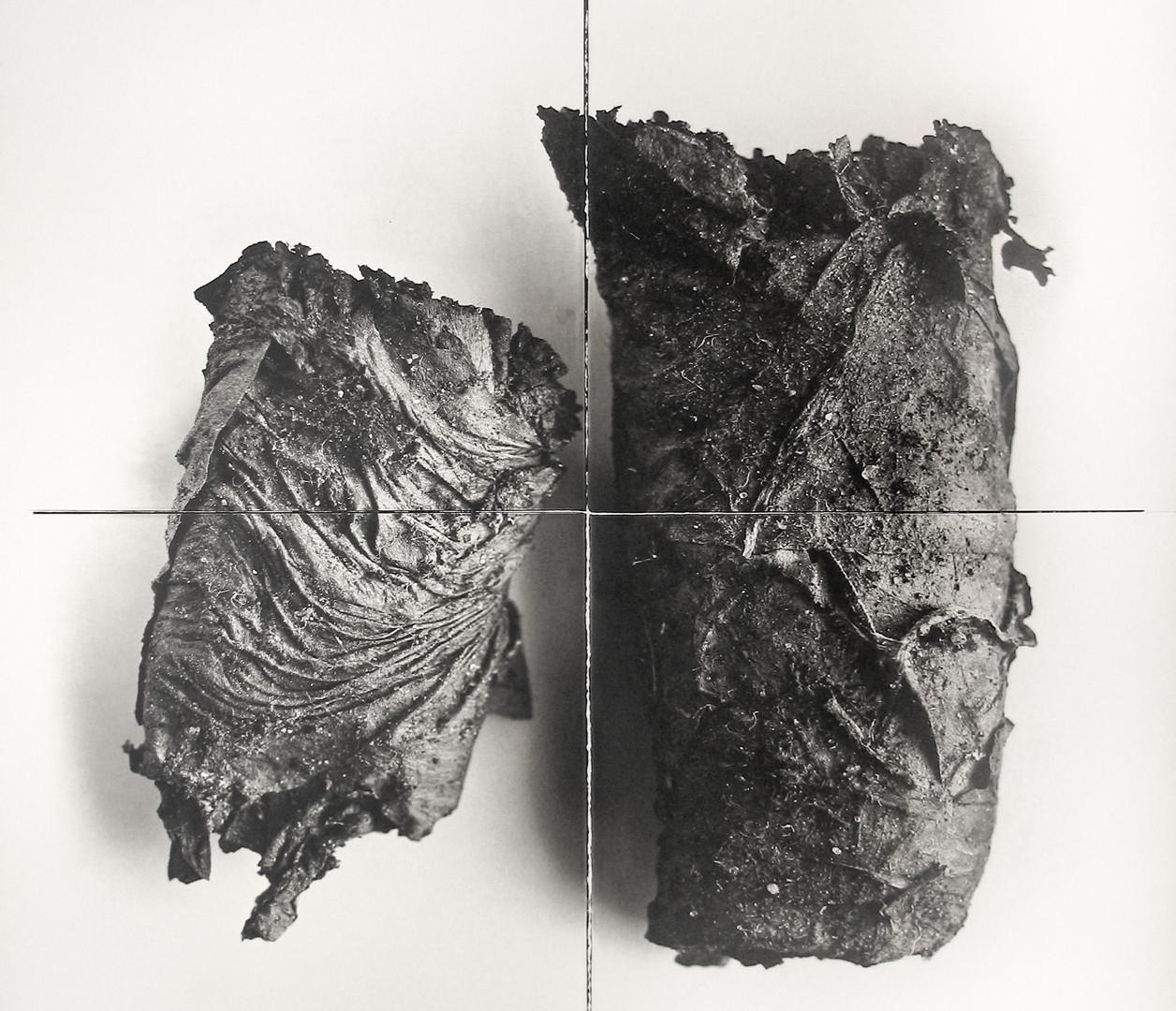 Irving Penn, Cigarette No. 69, New York, 1972