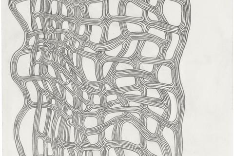 James Siena, Manifold (Graphite) I, 2015