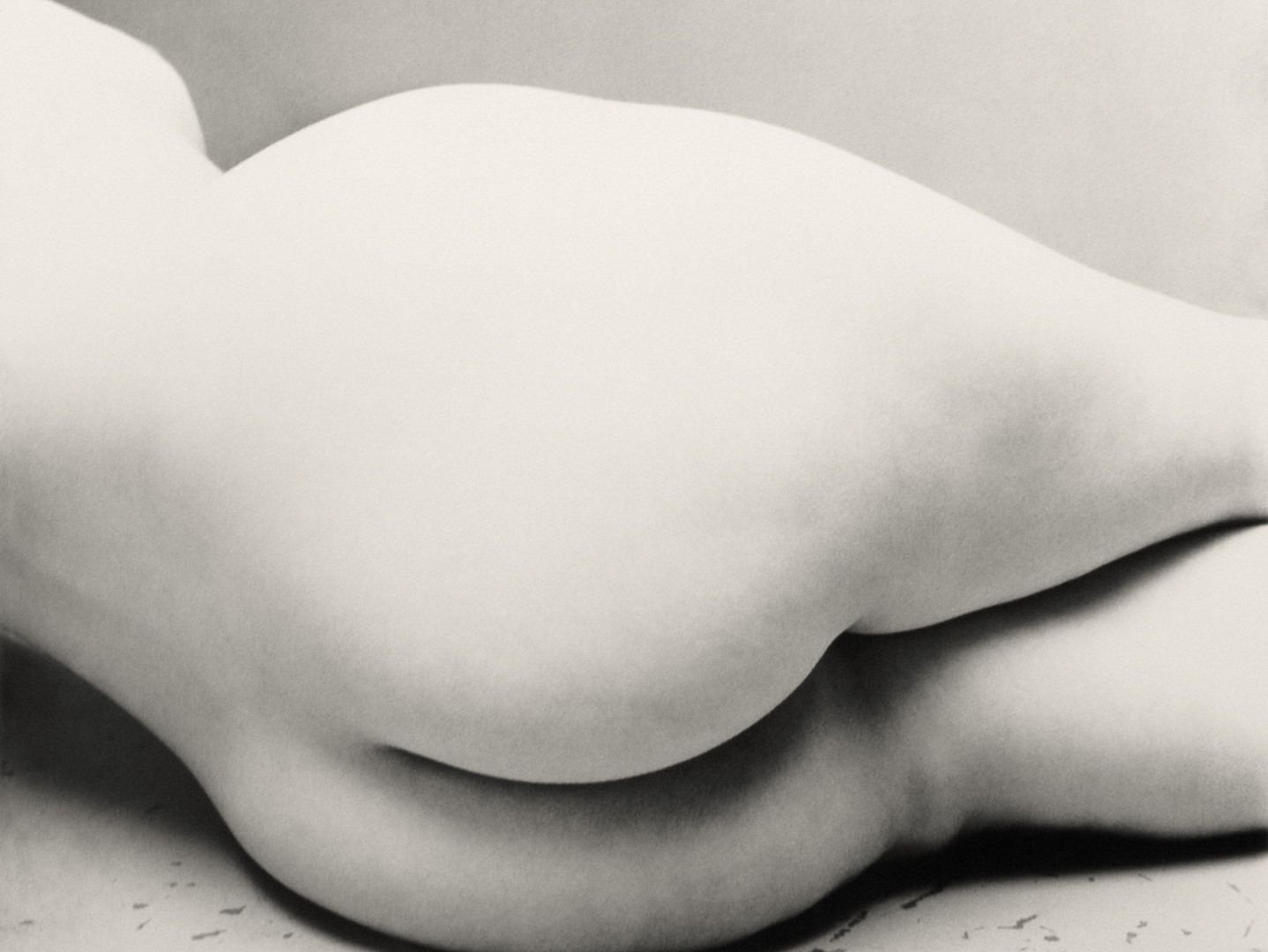 Irving Penn, Nude No. 143, New York, c. 1949-1950