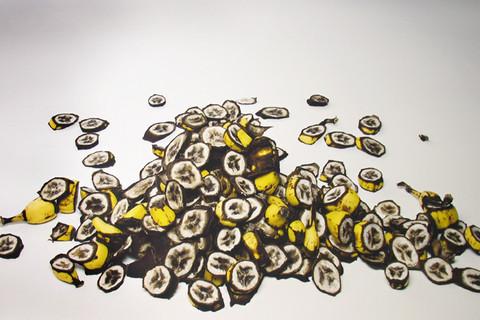 Irving Penn, Small Cuttings of Bananas, New York, 2008