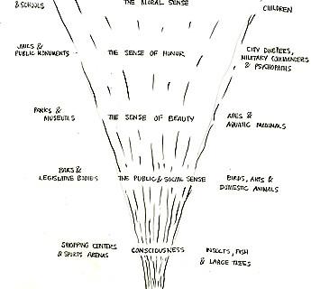 David Byrne, Hutchenson's Moral Senses, 2004