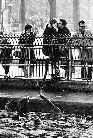 Garry Winogrand, Central Park Zoo, New York City, ca. 1963