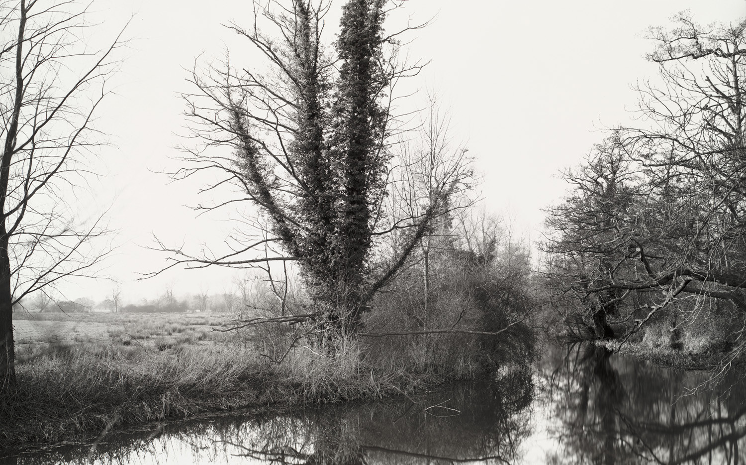 Richard Learoyd, The River Stour from Deadman's Bridge near Flatford (Winter), 2013