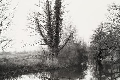 Richard Learoyd, The River Stour from Deadman's Bridge near Flatford (Winter), 2013