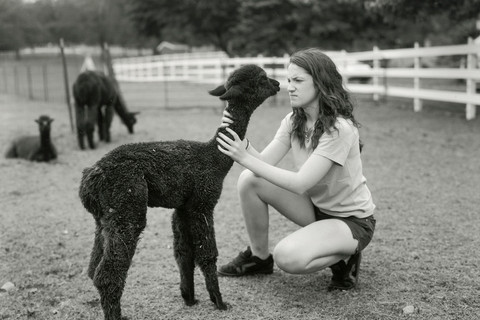 Judith Joy Ross, Young alpaca and girl scout, 2009