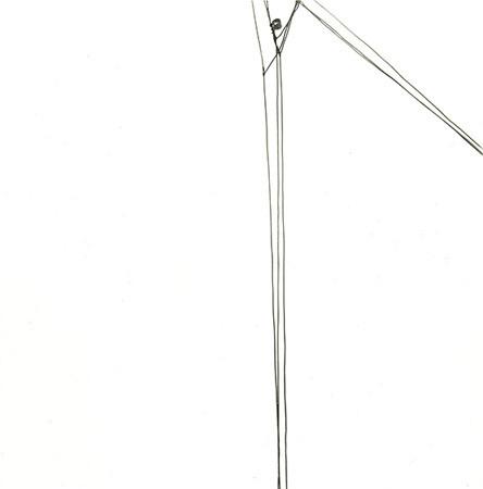 Harry Callahan, Telephone Wires, 1960s