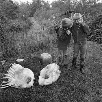 Emmet Gowin, Barry, Dwayne and Turkeys, Danville, Virginia, 1970