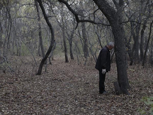 Hai Bo, Old Man, 2009