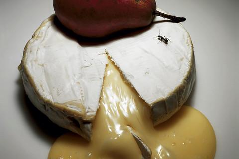 Irving Penn, Ripe Cheese, New York, 1992