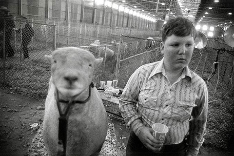 Garry Winogrand, Fort Worth, Texas, 1975