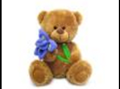 Медвежонок Сэмми с ирисом муз.(18см)